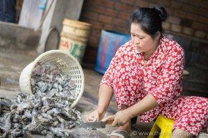 De vissersfabriek in Cambodja